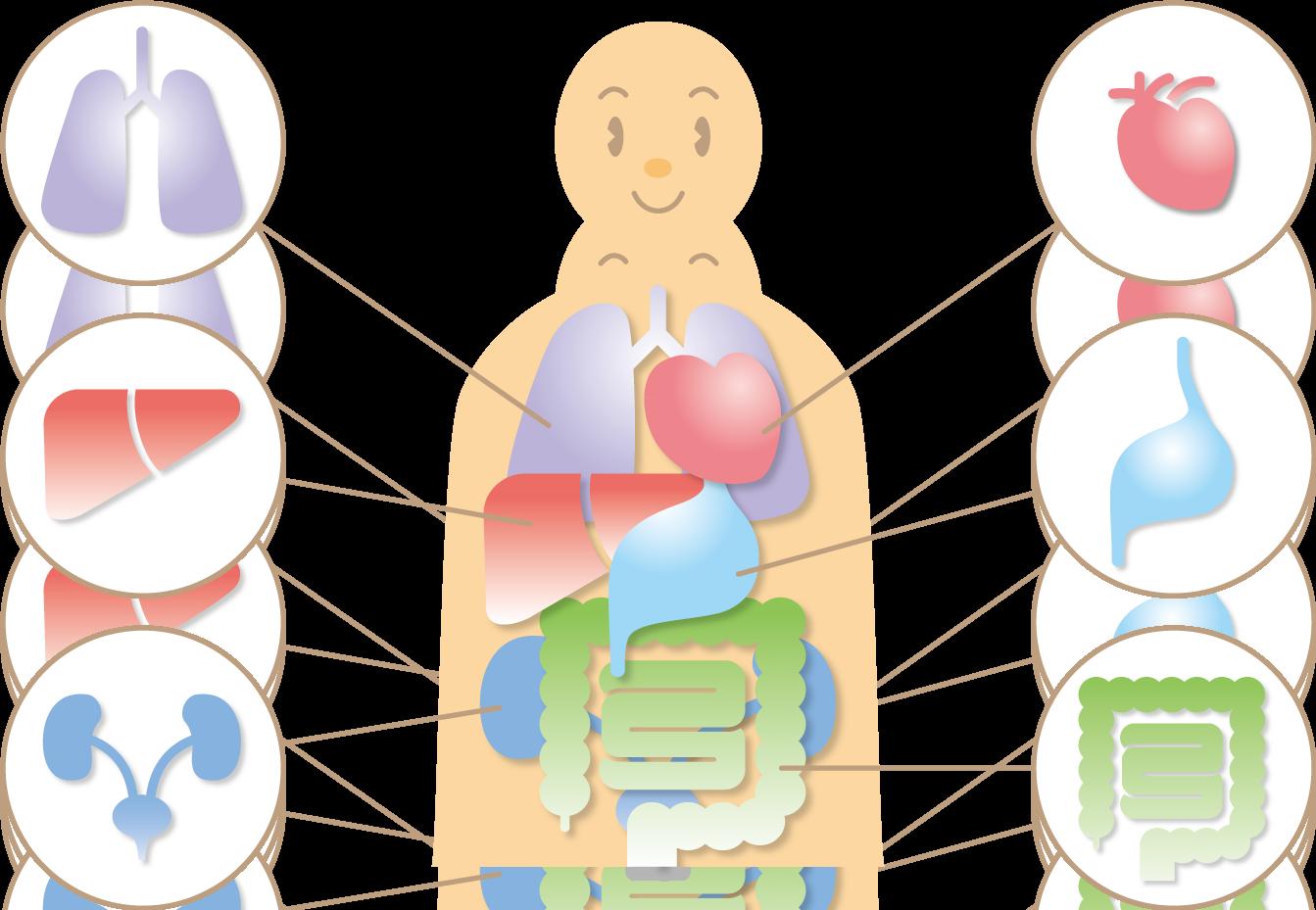 企業のがん検診に指針 厚労省、受診率向上図る